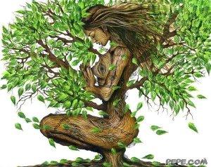 L' albero della vita