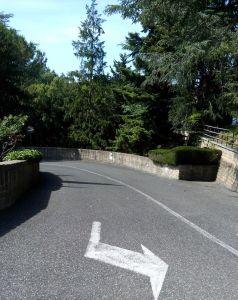 Non è solo una strada alberata. Guarda la freccia, va a destra o a sinistra. E la strada è una discesa o una salita?